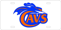 212006 Virginia, University of - Cavs Silver-Orange-Blue
